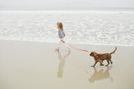 High angle view of girl holding pet leash while walking with dog on shore at beach - CAVF58286