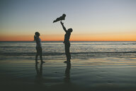 Woman looking at man throwing son in air at beach during sunset - CAVF58375