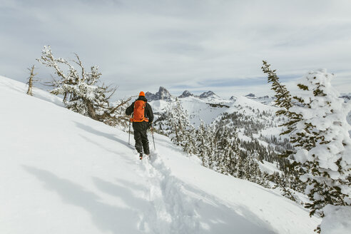 Rear view of hiker with backpack using ski poles while walking on snowcapped mountain - CAVF58876