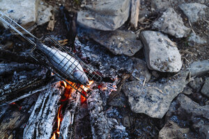 High angle view of fish grilling in campfire - CAVF59065