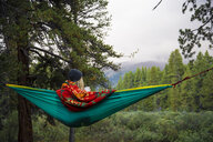 Rear view of woman relaxing on hammock in forest - CAVF59074