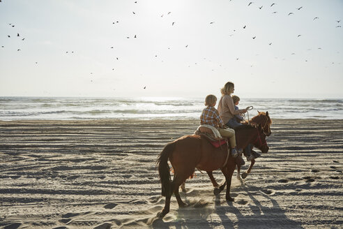Chile, Vina del Mar, mother with two sons riding horses on the beach - SSCF00114