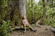 Chile, Puren, Nahuelbuta National Park, smiling boy sitting at a tree in forest looking up - SSCF00141