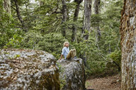 Chile, Puren, Nahuelbuta National Park, boy sitting on a rock in forest - SSCF00144