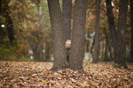 Baby boy standing by tree trunks at park during autumn - CAVF59624