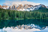 Scenic view of frozen lake in the forest in Italy - INGF09761