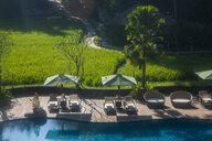 Indonesia, Bali, Ubud, Swimming pool in the Kamandalu Ubud resort, rice paddies - RUNF00388