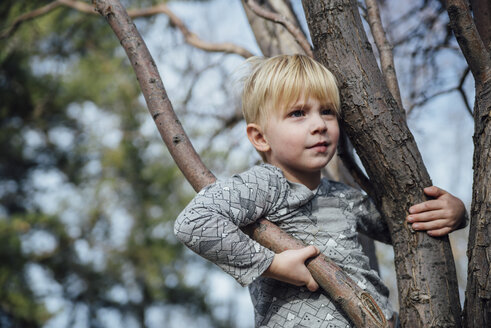Boy looking away while standing on tree - CAVF59958