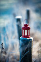 A red lantern - INGF10391