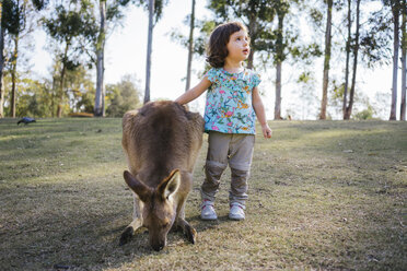 Australia, Brisbane, little girl standing next to tame kangaroo - GEMF02675