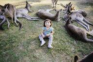 Australia, Brisbane, portrait of smiling little girl sitting on a meadow between tame kangaroos - GEMF02684