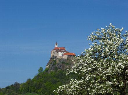 Austria, Styria, - WWF04558