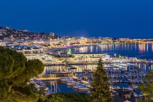 France, Provence-Alpes-Cote d'Azur, Cannes, Marina and Boulevard de la Croisette in the evening - WDF04925