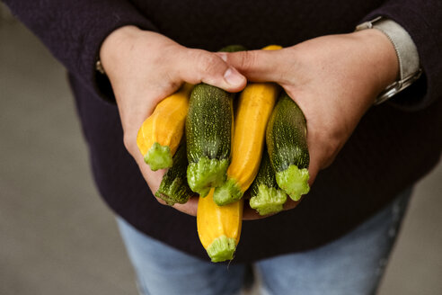 A woman holding out her hands holding a bunch of freshly picked yellow and green courgettes. - MINF09821