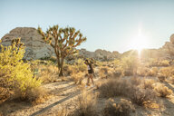 USA, California, Los Angeles, woman walking in Joshua Tree National Park in backlight - DAWF00851