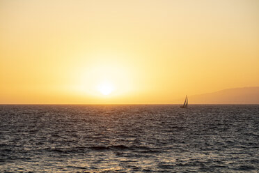 USA, California, Santa Monica, sailboat on the sea in backlight - DAWF00875