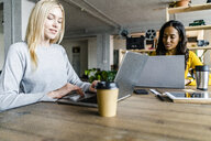 Two young businesswomen sitting at conference table in loft office using laptops - GIOF05205