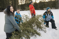 Family carrying cut down Christmas tree in snow - HEROF01081