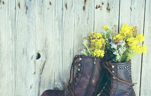 Low section shot of flowering plants in a shoe against a wall - INGF10612