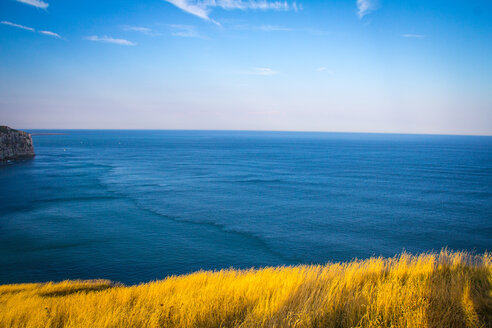Scenic view of the sea on a sunny day - INGF11078