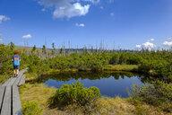 Germany, Bavaria, Lower Bavaria, near Frauenau, Bavarian Forest, Zwieselter Filz, Kohlschachten, young hiker on experience path Hochschachten - LBF02304