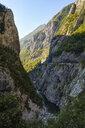Montenegro, near Kolasin, Moraca Valley - SIEF08242