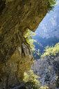 Montenegro, Kolasin, Mrtvica Canyon, way under rock - SIEF08248