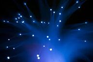 Blue fibre optic - SKAF00087