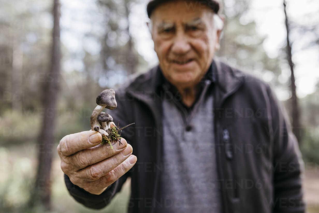 Senior man showing found mushrooms - JRFF02240 - Josep Rovirosa/Westend61