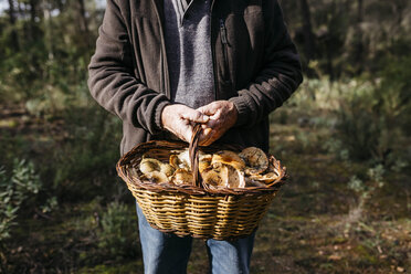 Close-up of senior man holding basket full of mushrooms in the forest - JRFF02249