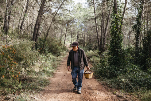 Senior man looking for mushrooms in the forest - JRFF02252