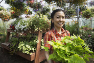 Portrait of smiling woman in plant nursery greenhouse - HEROF02942