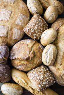 Various sorts of bread, close-up - GIOF05260