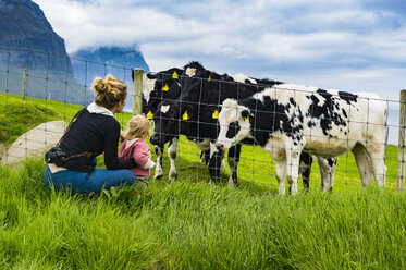 Denmark, Faroe islands, Vidoy, Mother and daughter and cows - RUNF00551