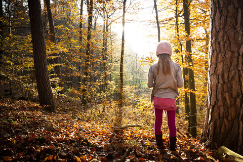 Young girl standing alone in autumn forest, rear view - LVF07634