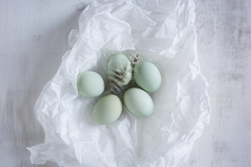 Five green eggs and a feather on white tissue paper - OJF00317