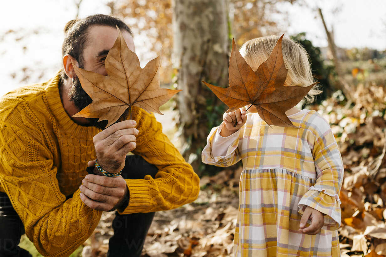 Father and daughter enjoying a morning day in the park in autumn, playing with autumn leaves - JRFF02254 - Josep Rovirosa/Westend61