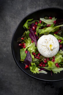Oriental salad with mint, pistachios, pomegranate seeds and burrata cheese - LVF07638