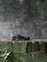 Close-up shot of a dirty shoe on a brick wall - INGF11674