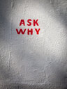 Ask why text graffiti on white wall - INGF11705