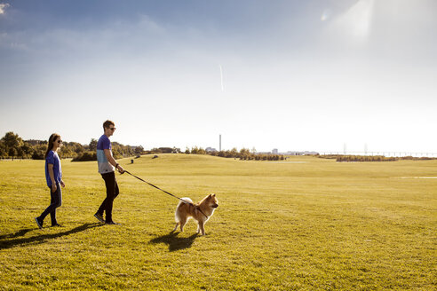 Full length of couple with dog walking at park on sunny day - ASTF00106
