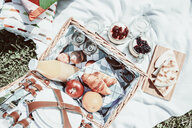 High angle view of a fresh picnic breakfast - INGF11855