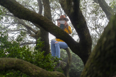 Woman sitting on a tree, taking pictures with her smartphone - AFVF02193