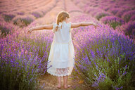 A free girl in a lavender field - INGF12010