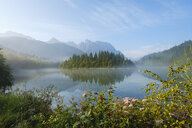 Germany, Bavaria, Werdenfelser Land, Isar dam Kruen, morning fog - SIEF08262