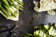 Directly above shot of flowers on table - ASTF01084
