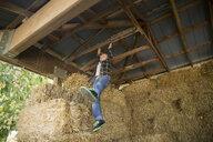 Boy hanging from rafter in hay barn - HEROF03731