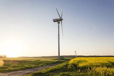 Windrad am Kap Arkona, Halbinsel Wittow, Ostseeinsel Rügen, Ostsee, Mecklenburg-Vorpommern, Deutschland - MAMF00269
