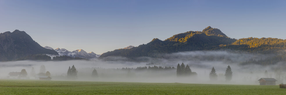 Germany, Bavaria, Upper Allgaeu, Loretto meadows near Oberstdorf with morning fog and mountains in background - WGF01286
