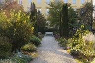 Germany, Upper Bavaria, Freising, Weihenstephan, Oberdieckgarten - SIE08280